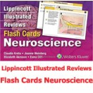 Lippincott Illustrated Reviews Flash Cards: Neuroscience 2016