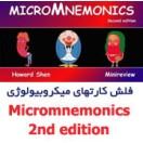 Microbiology Memory Cards: MicroMnemonics 2013