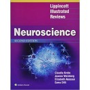 Lippincott Illustrated Reviews: Neuroscience (Lippincott Illustrated Reviews Series) 2nd Edition